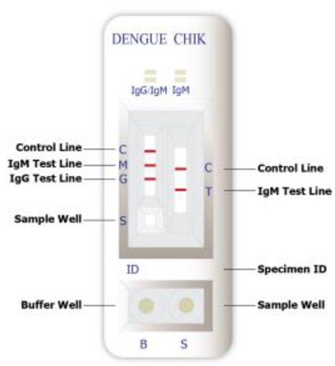 Dengue vs chikungunya test