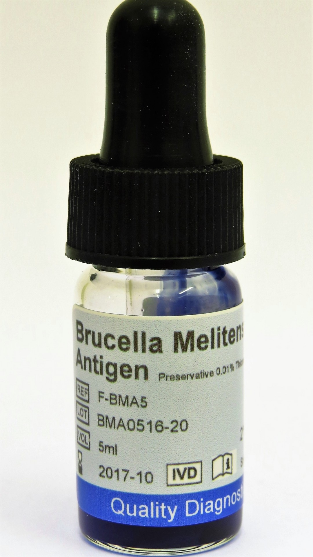 Febrile Antigen Brucella Melintensis