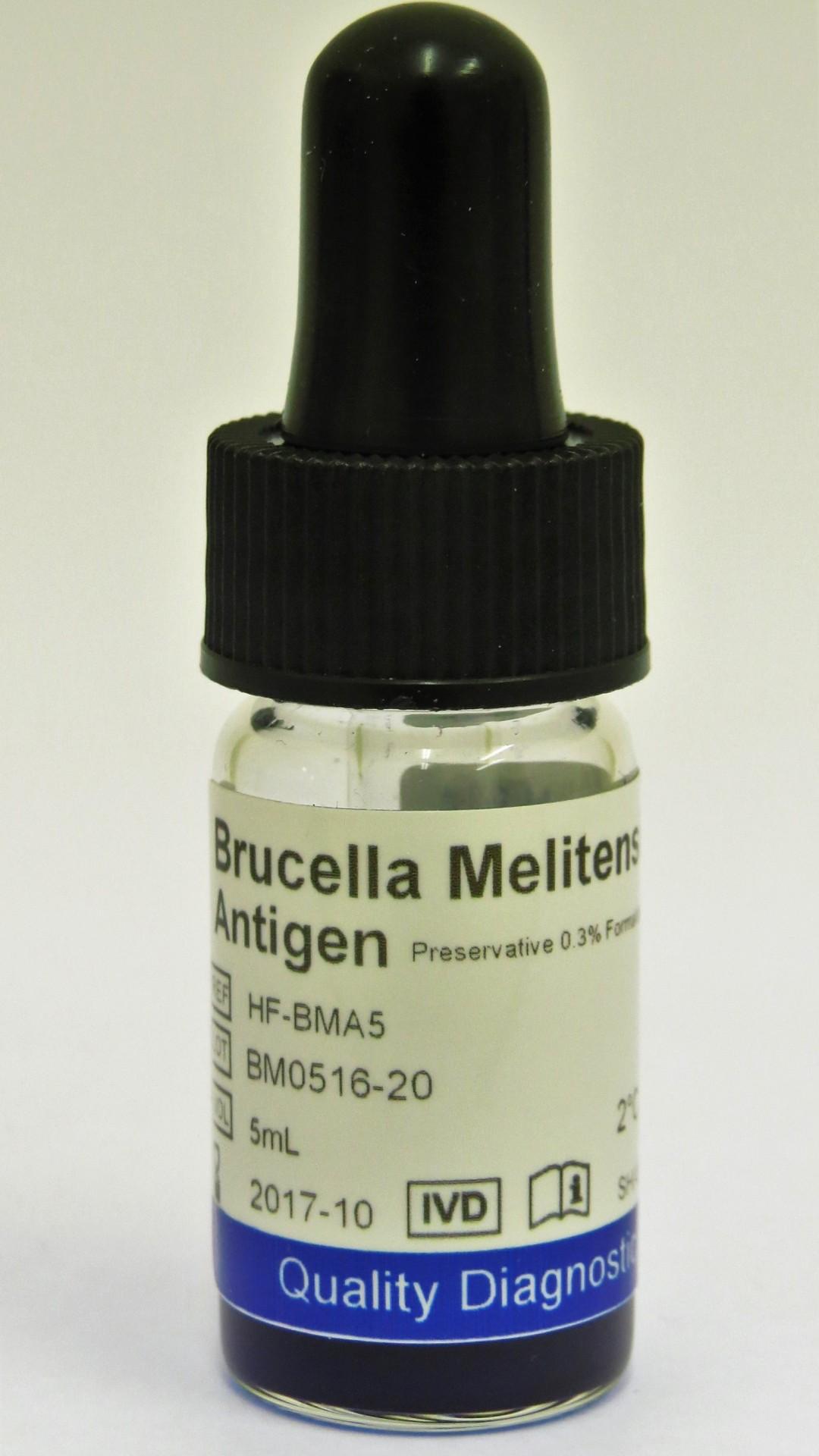 Brucella Melitenes Febrile Antigen