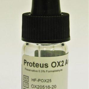 Febrile Antigen Proteus OX2
