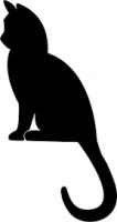 Feline Rapid Tests