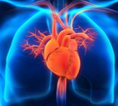 Heart and Lung Diseases